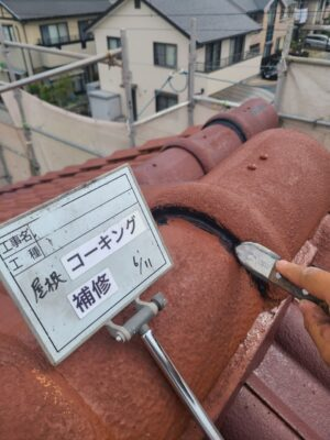 屋根コーキング補修